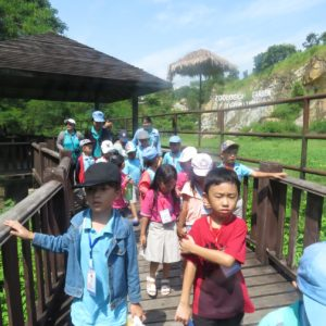A trip to zoo