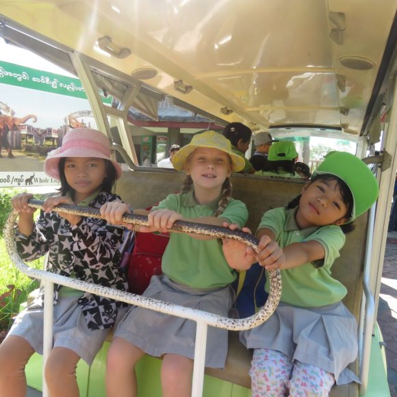 Primary students trip to zoo